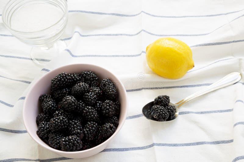 Les ingrédients pour des mûres bloquent : baies, citron, sucre sur le tissu, vue d'angle faible Plan rapproch? photographie stock
