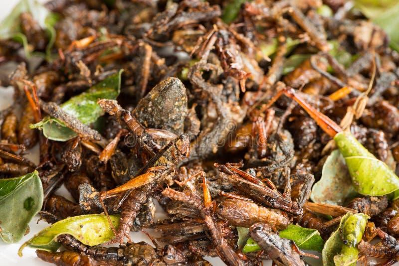 Les insectes comestibles frits se mélangent aux feuilles vertes de chaux photo stock