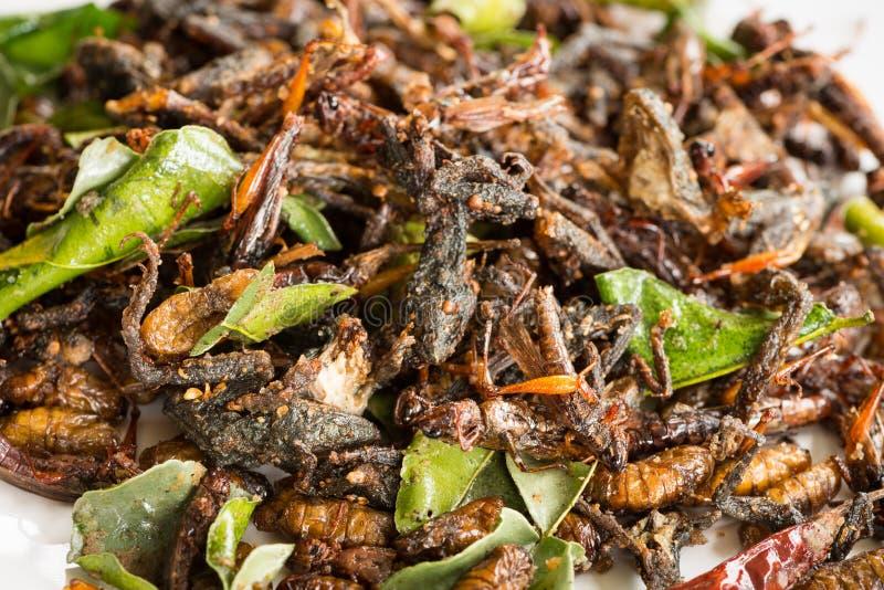 Les insectes comestibles frits se mélangent aux feuilles vertes de chaux photographie stock