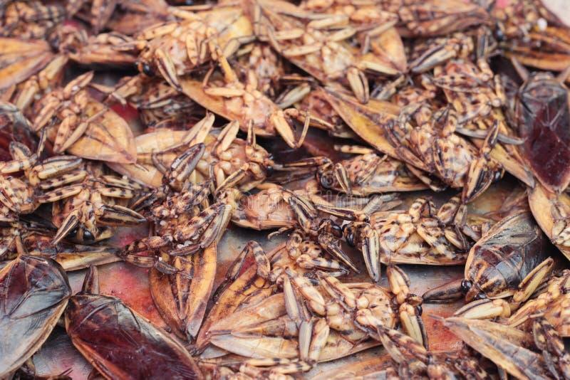 les insectes frits est délicieux sur le marché photographie stock