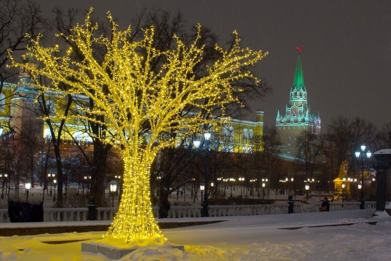 Les installations légères de couleur de l'arbre près de Squre rouge dans la soirée d'hiver photos stock
