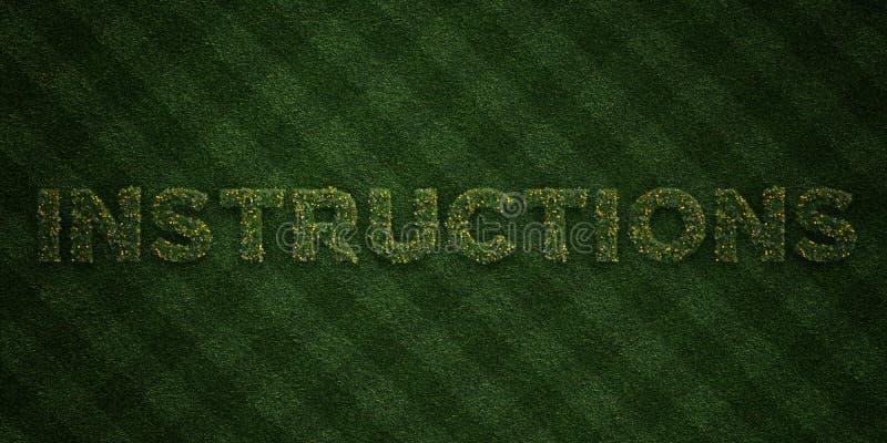 Les INSTRUCTIONS - lettres fraîches d'herbe avec des fleurs et des pissenlits - redevance rendue par 3D libèrent l'image courante illustration de vecteur