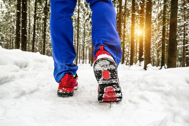 Les jambes en plan rapproché d'espadrilles vont sur un chemin neigeux dans la forêt images libres de droits