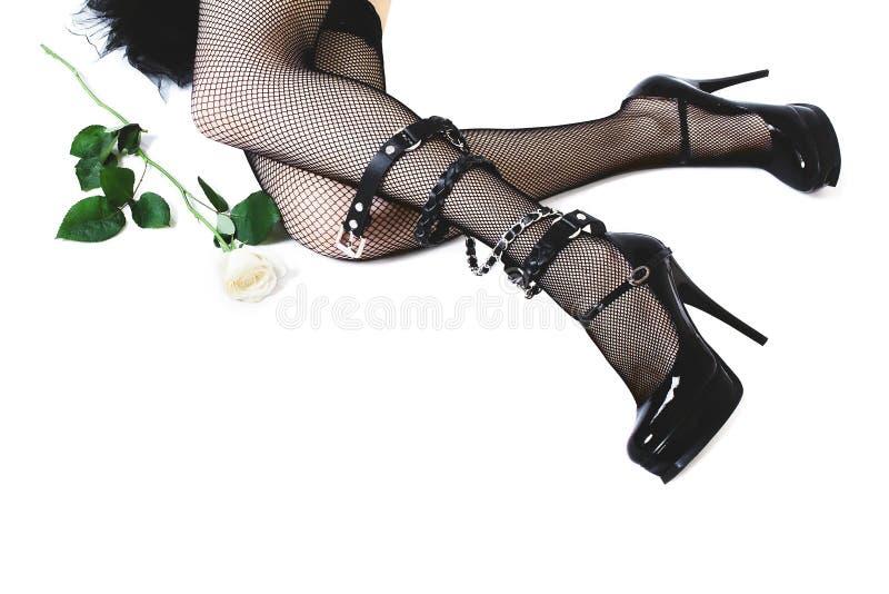 Les jambes femelles dans le talon haut noircissent des chaussures et des bas sur le fond blanc images stock