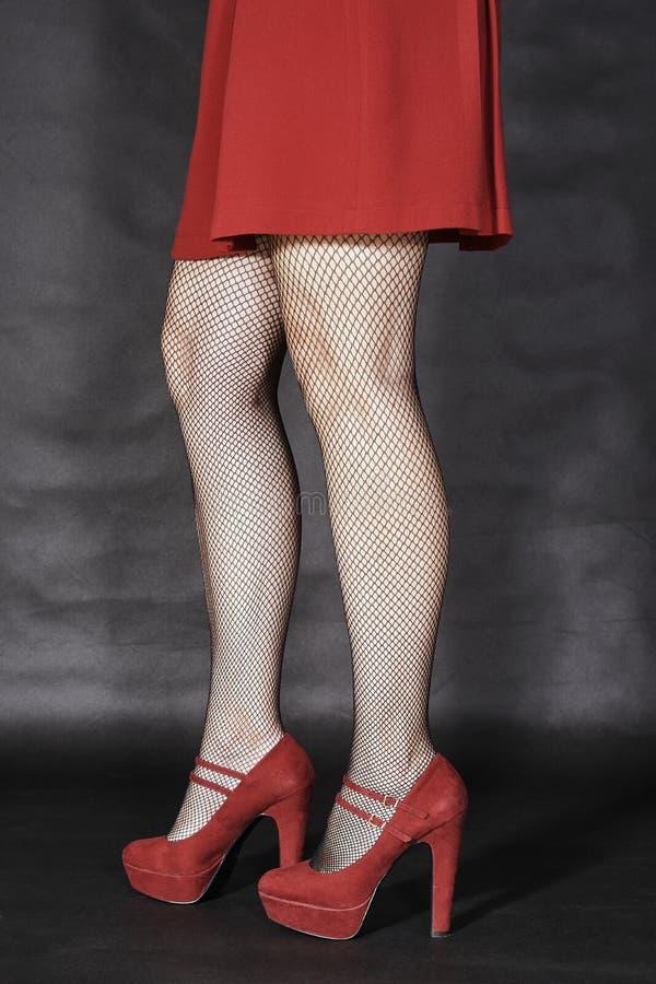 Les jambes minces de la fille photographie stock