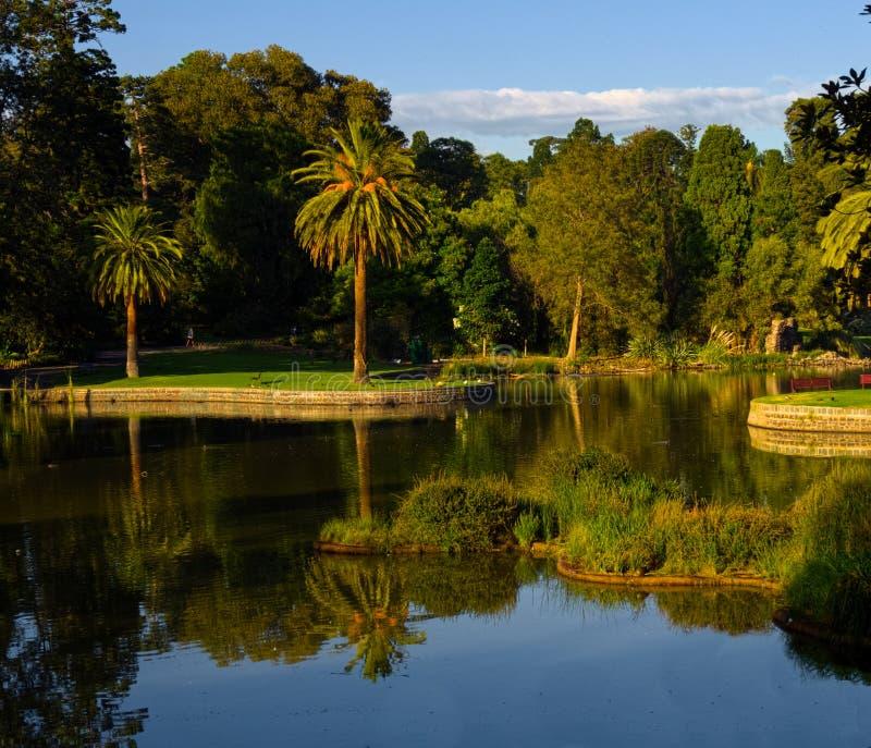 Les jardins botaniques royaux à Melbourne photographie stock libre de droits