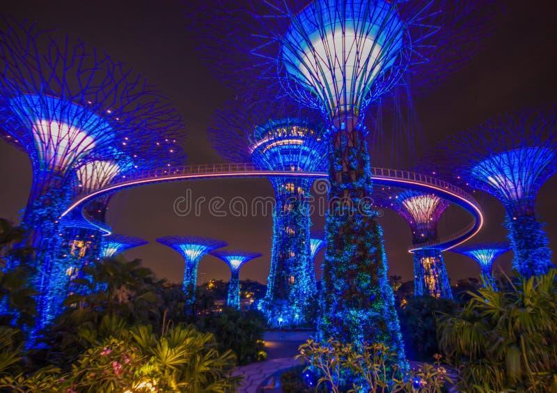 Les jardins merveilleux par la baie, Singapour photographie stock libre de droits