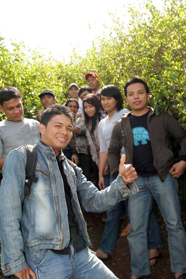 Les jeunes à la plantation images stock