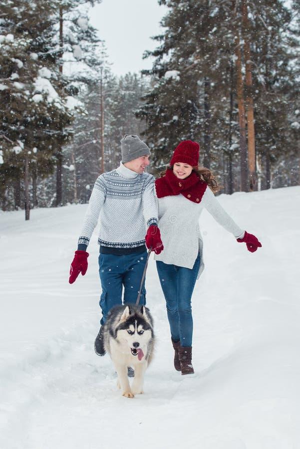 Les jeunes ajouter à un chien enroué marchant en hiver se garent, homme et femme jouant et ayant l'amusement avec le chien photos stock