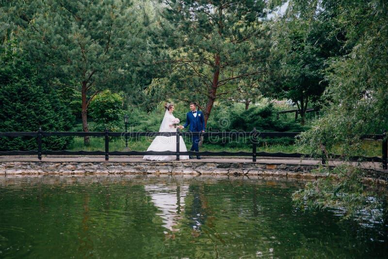 Les jeunes mariés marchent en parc vert, l'homme mènent son épouse à travers le pont, la tenant par photos stock