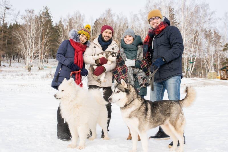Les jeunes posant avec des chiens image stock
