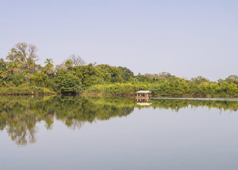 Les jungles et la rivière photos libres de droits