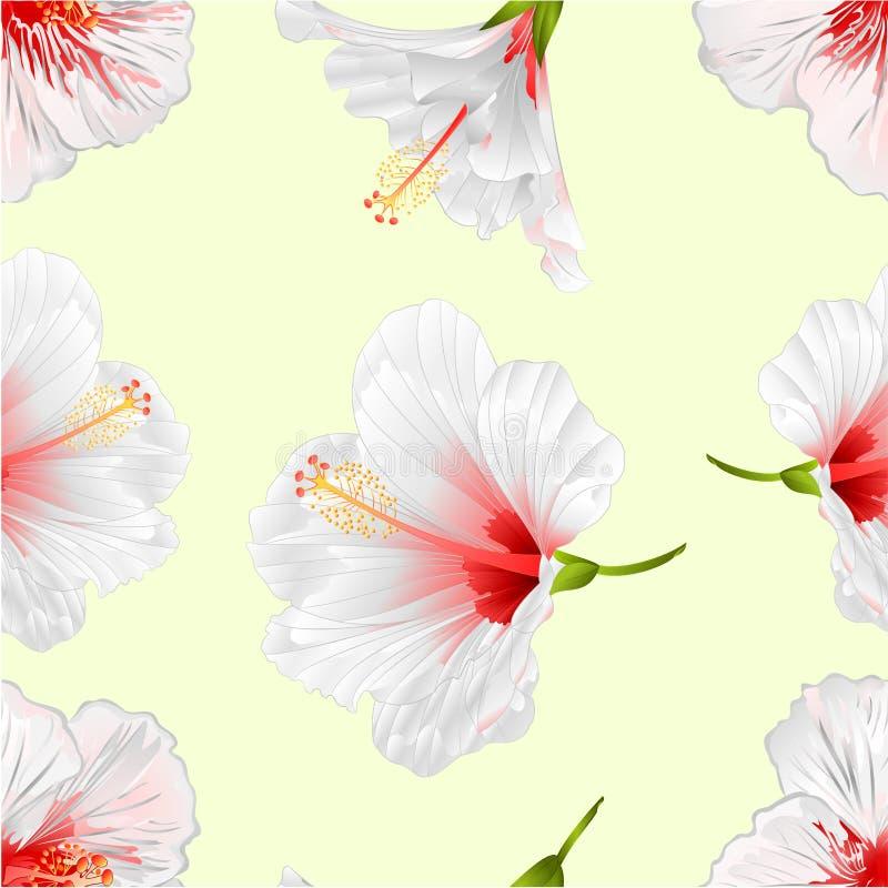 Les ketmies blanches de texture de plante tropicale sans couture de fleurs sur une main editable de fond de vintage d'illustratio illustration de vecteur