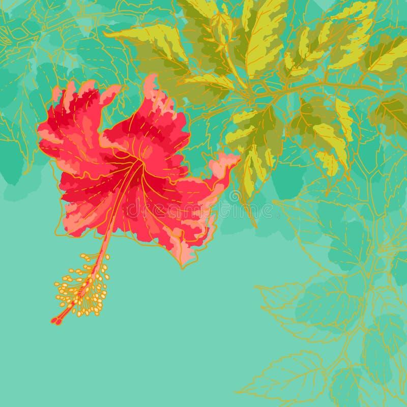 Fleur de ketmie sur le fond modifié la tonalité illustration de vecteur