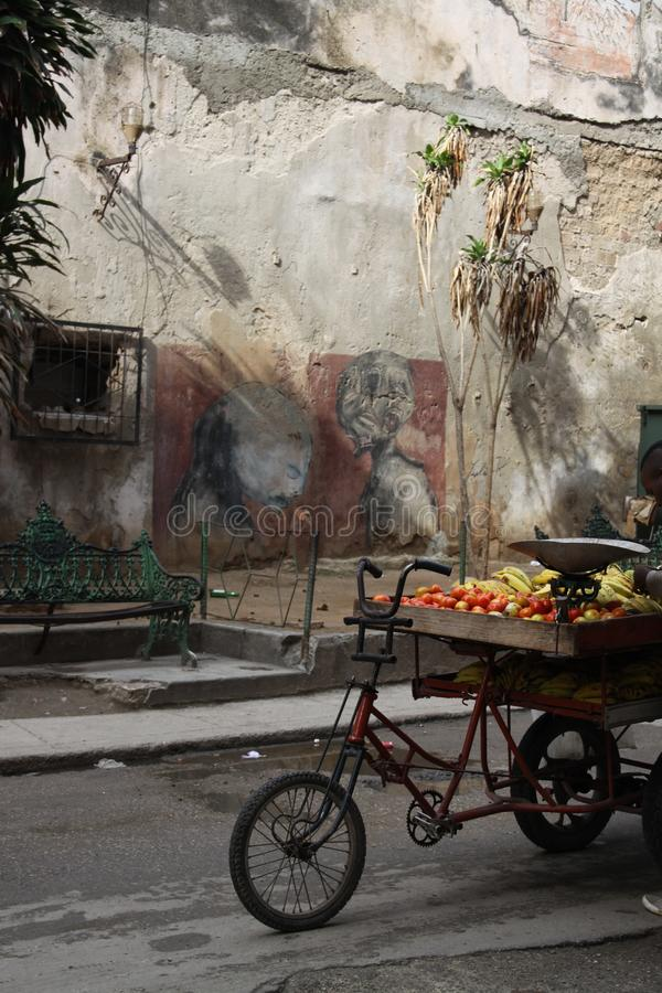 Les légumes lancent sur le marché sur un vélo photographie stock