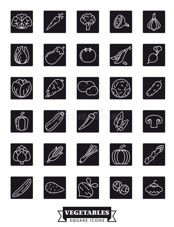Les légumes sains noircissent l'ensemble carré de vecteur d'icône illustration libre de droits