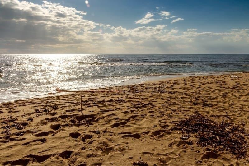 Les la plupart des plages de l'Italie : Parc de dune de Campomarino L'été détendent Tarente Pouilles image stock