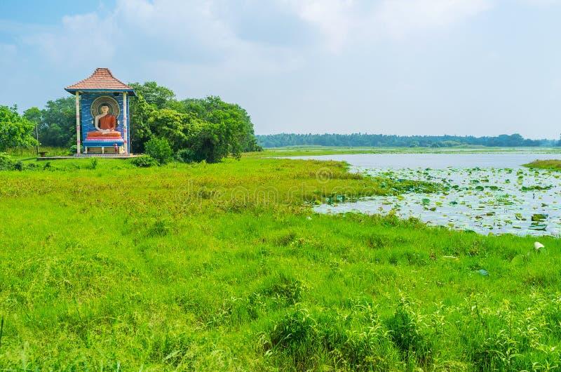 Les lacs verts de Sri Lanka images libres de droits