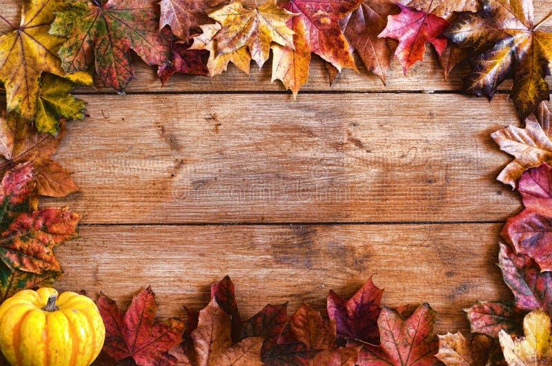Les lames d'automne encadrent le cadre photos stock