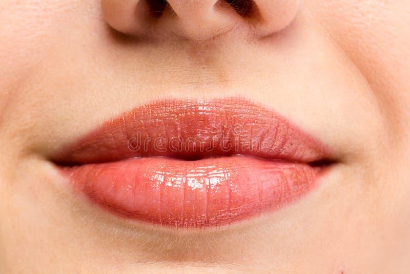 Les languettes femelles se ferment vers le haut Couleur rouge images libres de droits