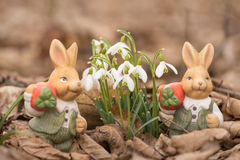 Les lapins de Pâques part au printemps à côté des perce-neige photographie stock