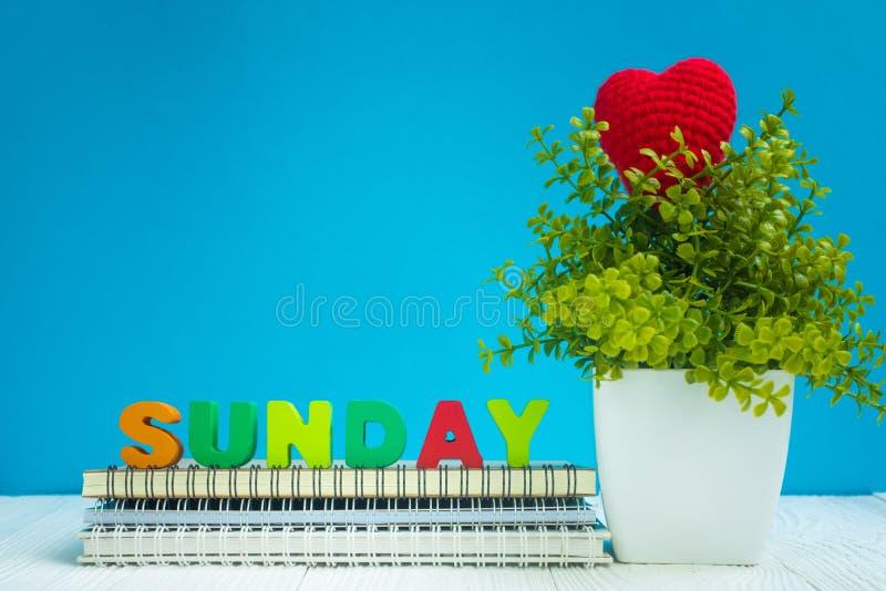 Les lettres de DIMANCHE papier texte et de carnet et petit arbre de décoration dans le vase blanc sur le fond en bois, bonjour co photographie stock libre de droits