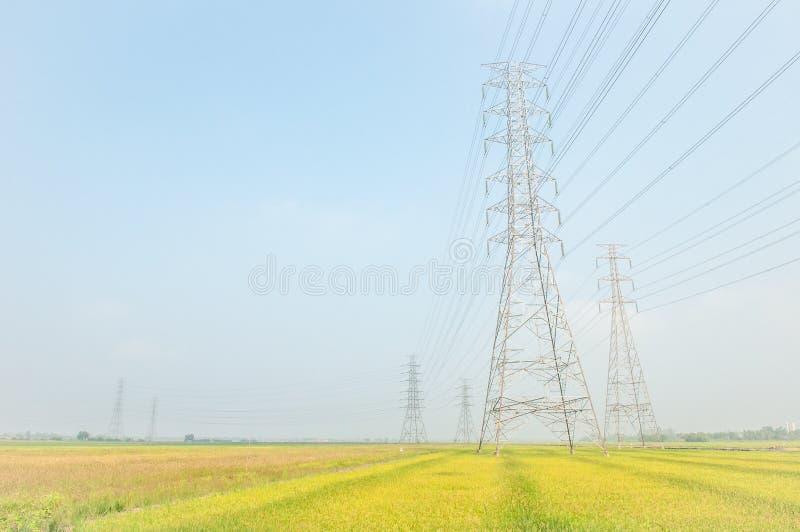 Les lignes à haute tension et les pylônes de puissance avec la rizière aménagent en parc photo libre de droits