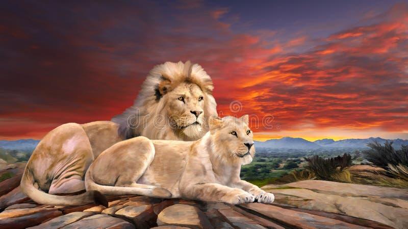 Les lions couplent dans le coucher du soleil illustration libre de droits