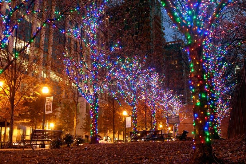 Les lumières colorées de vacances ornent des arbres dans le Midtown Atlanta photographie stock libre de droits