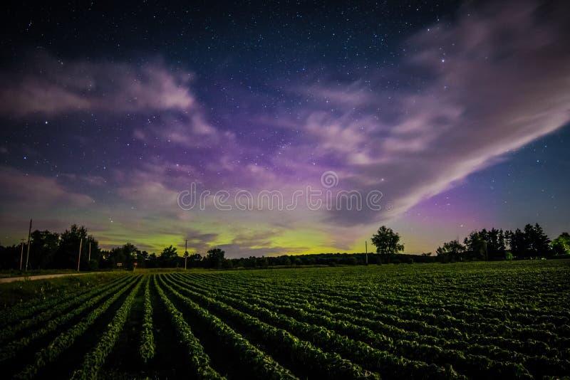 Les lumières du nord photo libre de droits