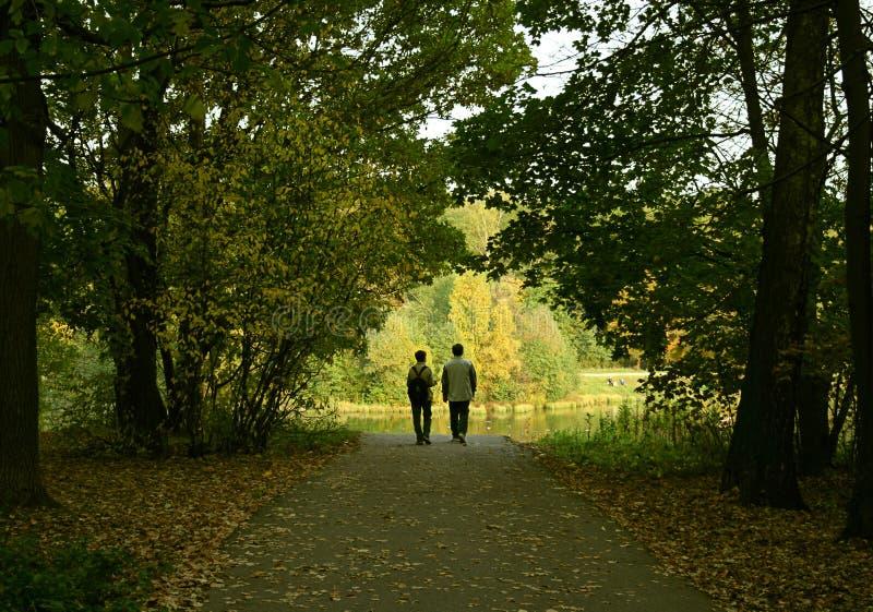Les ménages mariés dans la forêt image libre de droits