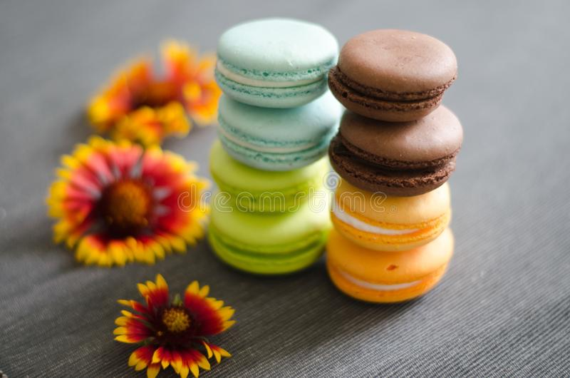 Les macarons colorés se tiennent droits sur la table photo libre de droits