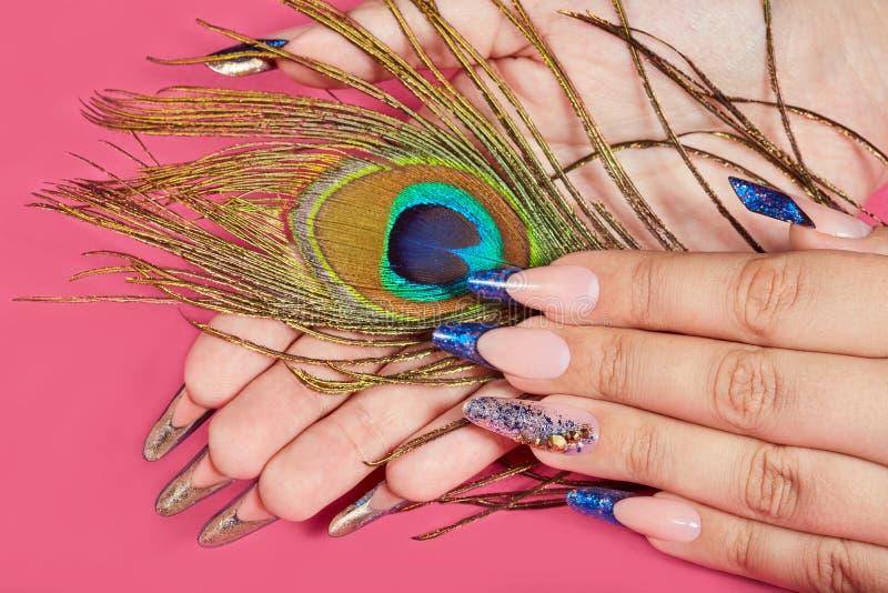 Les mains avec de longs ongles manucurés français bleus artificiels et le paon font varier le pas images stock