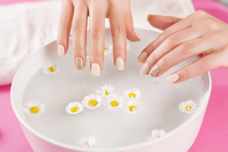Les mains de femme avec des ongles de manucure et la cuvette avec l'eau et la marguerite fleurissent photo stock