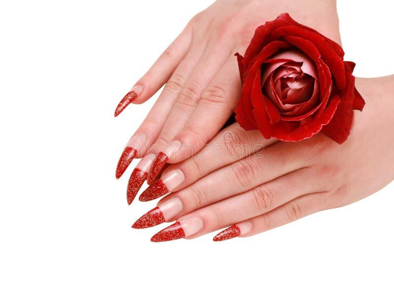 Les mains de femme avec le rouge ont monté photos libres de droits
