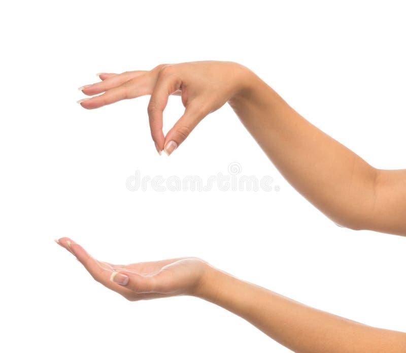 Les mains de femme tiennent la carte de visite professionnelle de visite virtuelle de signe et ouvrent la paume images stock