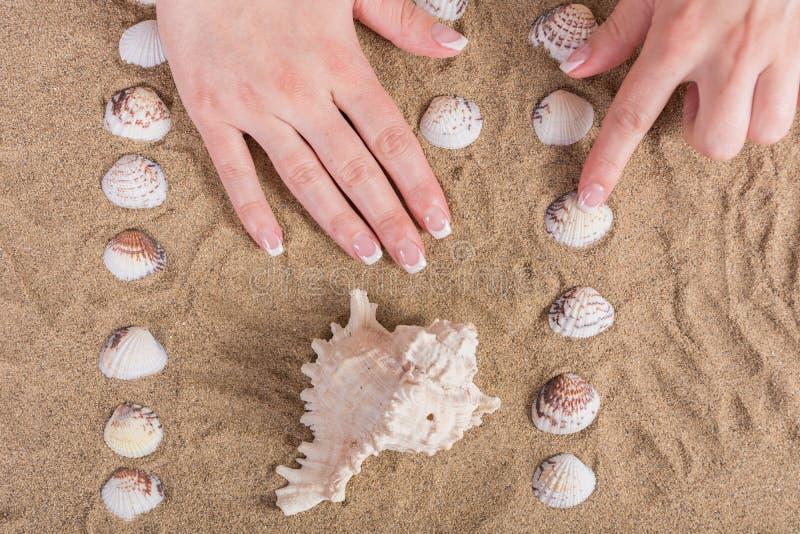 Les mains de jeune fille avec français vernis à ongles sur la plage sablonneuse avec la coquille de mer images stock