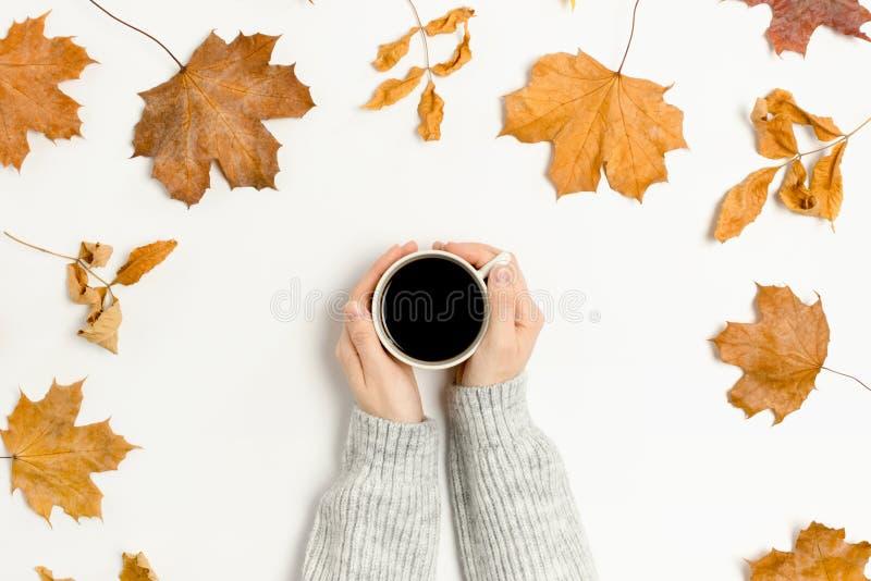 Les mains de la femme dans un chandail tenant une tasse de café sur le fond blanc photos stock