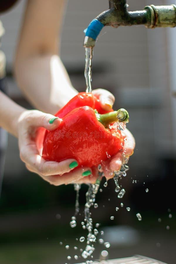 Les mains de la femme lavent le paprika rouge Paprika sous l'?coulement de l'eau Ingr?dient pour la salade v?g?tarienne L?gumes q images stock
