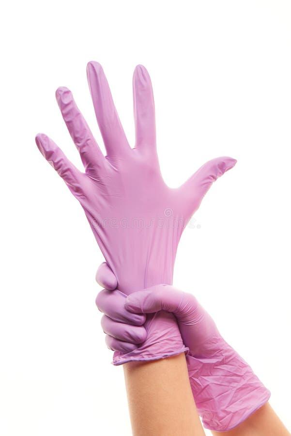 Les mains du docteur féminin mettant sur le pourpre ont stérilisé les gants chirurgicaux images libres de droits