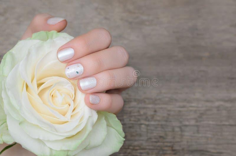 Les mains femelles avec le clou blanc conçoivent tenir la rose de blanc images stock
