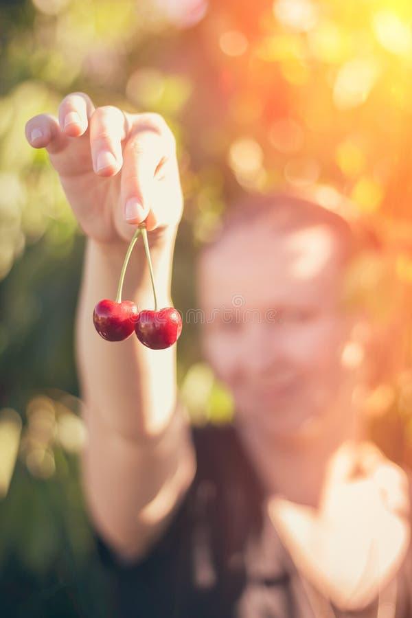 Les mains femelles tiennent les baies mûres de cerise photographie stock