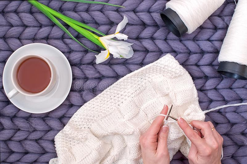 Les mains femelles tricotent une couverture avec des aiguilles de tricotage passe-temps photographie stock libre de droits