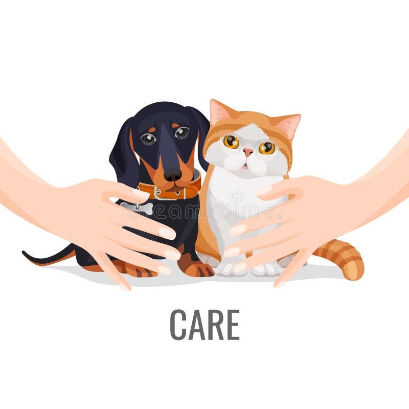 Les mains humaines prennent le soin au sujet du chien et du chat d'animaux familiers mignons illustration libre de droits