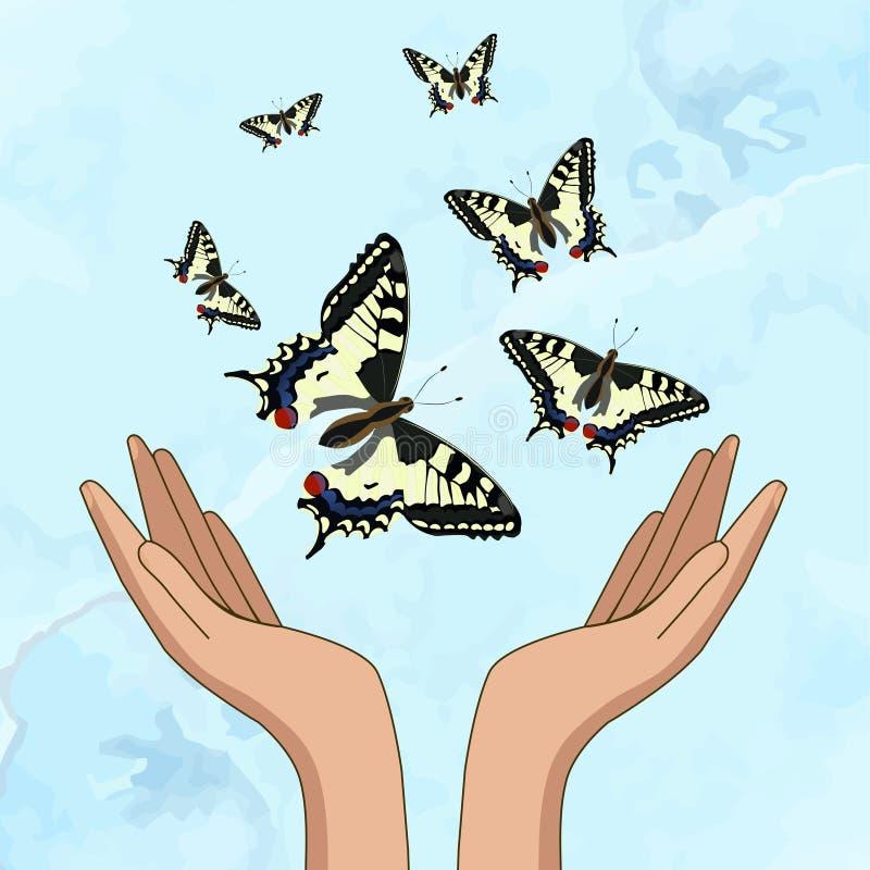 Les mains libèrent de beaux papillons jaunes Un d?jeuner sec dans une cuill?re Illustration de vecteur illustration libre de droits