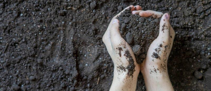 Les mains mettent en forme de tasse tenir la terre de sol au-dessus du fond au sol organique f images libres de droits