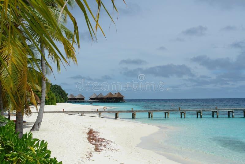 Les Maldives photo stock