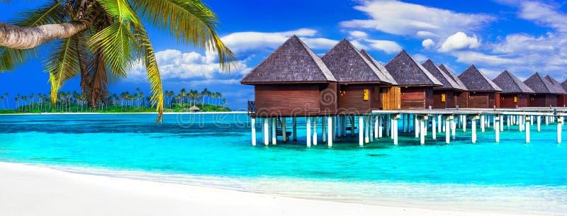 Les Maldives de luxe vacation - panorama avec des pavillons de l'eau photo stock