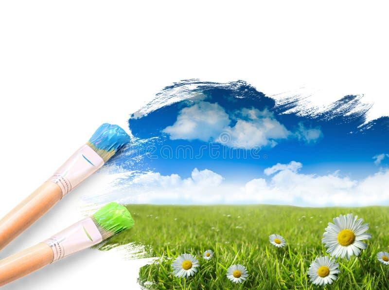 les marguerites bleues engazonnent le ciel sauvage photos stock