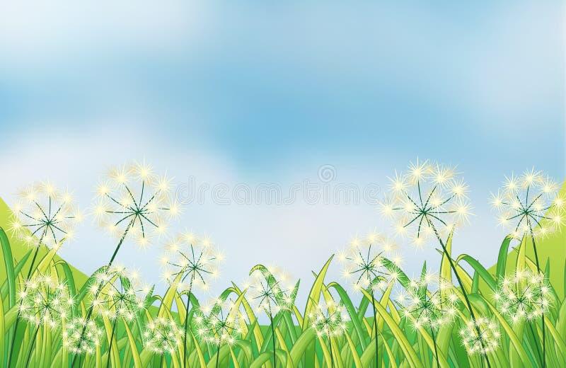 Les mauvaises herbes grandissantes sous le ciel bleu illustration libre de droits